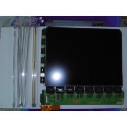 Pantalla LCD Monitor Blizo...